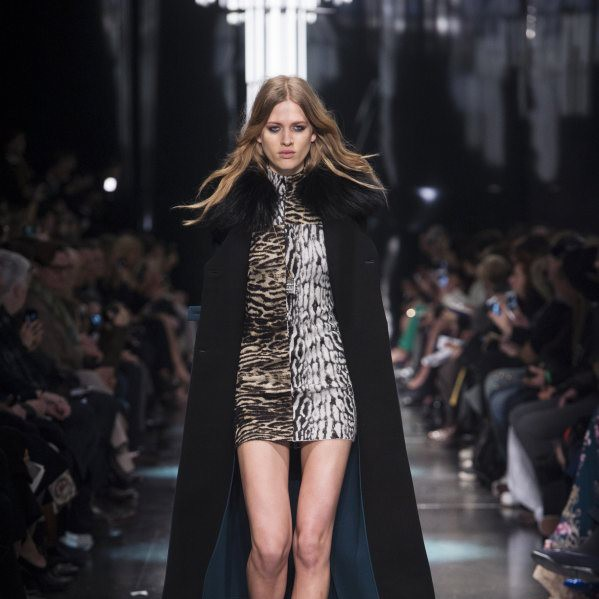 Roberto Cavalli Fall/Winter 2015